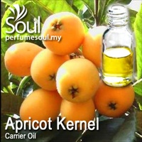 Carrier Oil Apricot Kernel - 100ml