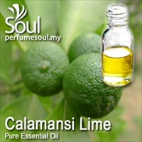 Pure Essential Oil Calamansi Lime - 50ml