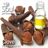 Pure Essential Oil Clove - 10ml