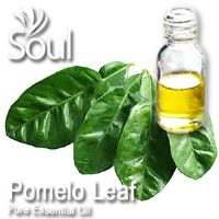 Pure Essential Oil Pomelo Leaf - 50ml