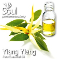Pure Essential Oil Ylang Ylang - 50ml